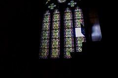 IMG_0933 (TomAndRobyn78) Tags: paris sunshine notredame eiffeltower blueskies warm birds pigeons