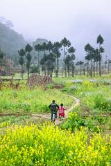 _U1H3178,0218 Spring in Ha giang (HUONGBEO PHOTO) Tags: mùaxuânhàgiang hàgiang đồngvăn xãsủnglà trẻemvùngcao vietnamscenery childrens spring highland landscape outdoor