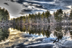 The pond (Pearce Levrais Photography) Tags: lake pond water reflection hdr canon 7d markii cloud forest shore shoreline