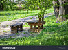Free Wooden Bench (antonmarkin) Tags: canon 6d architecture historic panoramalandscape summerbackground hdrphoto hdrimages hdrnature hdrlandscape backgroundgreen silence free bench park wooden garden background furniture grass wood seat perspective empty outdoor nature green close landscape old lawn hedge summer natural brown spring beautiful different view benches color tree nobody gardening rest table stone countryside ancient travel forest traditional 70200 f4 croatia plitvička jezera