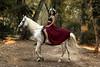 Beidy - 2/5 (Pogdorica) Tags: modelo sesion retrato posado chica caballo rio beidy alberche