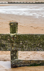 Beach and the posts. (CWhatPhotos) Tags: cwhatphotos photograph pics pictures pic picture image images foto fotos photography artistic that which contain digital blyth north east england uk beach seaside coast coastal sea waters sand sandy winter 2018 january sky skies golden sands post posts fences defences