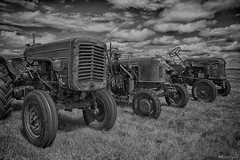 30072017-DSC00700_HDR (RomSGN) Tags: tracteur hdr sony a7 noir et blanc bw tractor farm agriculture farming field wheel machine rural equipment agricultural old machinery industry work farmer