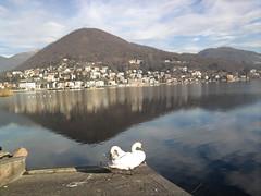 Varese (Renato.Panzanato) Tags: lago scenario montagna luoghi