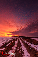 Waiting (andrewslaterphoto) Tags: andrewslaterphotography clouds discoverwisconsin freeze frozen hike horicon ice landscape landscapes marsh nature outdoors snow sunset trail travelwisconsin winter wisconsin unitedstates us canon 5dmarkiii visitwisconsin epic wildlife refuge waiting