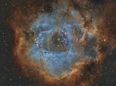 Rosette Nebula (Paddy Gilliland @ Image The Universe) Tags: nebula pn planetarynebula ngc2237 rosette space nebulae stars night astro astronomy astrophoto astrophotography ap lrgb rgb hubble cosmos texture abstract outdoor wide widefield nighttime sky dark colo astrometrydotnet:id=nova2444557 astrometrydotnet:status=solved