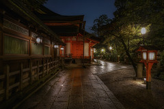 The garden at night (karinavera) Tags: longexposure night photography urban ilcea7m2 garden japan temple rain