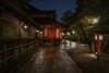 The garden at night (karinavera) Tags: longexposure night photography urban ilcea7m2 garden japan temple rain