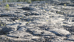 Lava Flows From (wyojones) Tags: hawaii hawaiivolcanoesnationalpark maunaulu lavaflows basalt pahoehoe