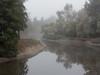 foggy day (atgc_01) Tags: canon g1x fog winter california