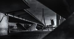 Erasmusbrug Rotterdam (Kijkdan) Tags: architecture architectuur rotterdam blackandwhite monochrome erasmusbrug bridge