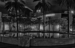 NSU Art Museum Fort Lauderdale, 1 E Las Olas Blvd, Fort Lauderdale, Florida, USA / Architect: Edward Larrabee Barnes / Built: 1986 (Jorge Marco Molina) Tags: nsuartmuseumfortlauderdale 1elasolasblvd fortlauderdale florida built1986 usa ftlauderdale city cityscape urban downtown skyline browardcounty southflorida density centralbusinessdistrict skyscraper building architecture commercialproperty cosmopolitan metro metropolitan metropolis sunshinestate realestate veniceofamerica newriver