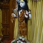 Maha Shivaratri (10)