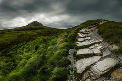 The Walk (steinmetznicolas) Tags: 2017 connemara irlande juin ireland national park landscape hike mountain cloud diamond hill walk nikon d610 1635 nature