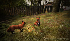 New 3D Ground Texture - Grass with Mole Holes -  coming this week (☀Vita Camino☀) Tags: sl vitacamino texture ground sim rentals slur best visit park forest italy rustic terrain secondlife coldlogic