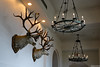 Deer heads and chandeliers (Canadian Pacific) Tags: alberta canada canadian nature banffnationalpark lakelouise fairmont chateau hotel deer head chandelier 2017aimg0344 111 drive dr
