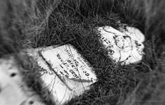 Sand Hollow Cemetery (Desert Sun Images) Tags: ilfordhp5 1600 ilfotecddx canonelan7 epsonv500 monochrome blackandwhite lensbabymuse filmdev:recipe=11741 ilfordhp5400 ilfordilfotecddx film:brand=ilford film:name=ilfordhp5400 film:iso=1600 developer:brand=ilford developer:name=ilfordilfotecddx