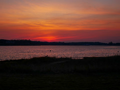 20180119-Sunset at Oyster Pond (ChathamGardens) Tags: oysterpond sunset capecod chathamma