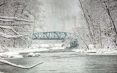 Snow Day (Roy Manchester) Tags: purple canon 5dsr bridges water woods availablelight catskill newyork unitedstates us canonllenses eos ef ef70200f28isiiusm 7020028lisii snow winter hudsonvalley upstatenewyork upstateny catskillnewyork