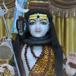 Maha Shivaratri (7)