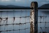 Fencing the river in... (zapperthesnapper) Tags: fence water post riverkent riverestuary estuary abstract sonyrx10 sonycybershot sonyimages sony