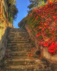 Stairway.... (Sherrianne100) Tags: hdr hss stairway acquitane bourg france