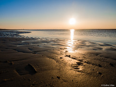 Sunset on the beach (✦ Erdinc Ulas Photography ✦) Tags: blue yellow water sun panasonic egmond aan zee gold landscape focus shadow horizon village bergen netherlands holland dutch nederland people tide low shell north coast sundaylights