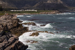H. (its.my.turn) Tags: hermanus southafrica coast cliffs sea gardenroute