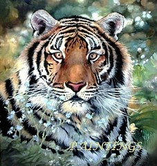 MY PAINTING iN WATERCOLOUR (Heidi's_PaSSioNs ღ) Tags: painting acrylics watercolour tiger realism wild