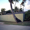 2018-19 (biosfear) Tags: 120mm kailua oahu breezy morning