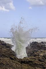 20180207-IMG_0359 (alexeyborissov) Tags: bethells beach bay water wild newzealand nz auckland adventure natgeo nature aucklandnz travel tasmansea ocean coast