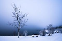 Winter See (FODA_82) Tags: see lake landschaft landscape winter snow schnee eis eisig ice water dream cold kalt nikon d750 tamron 1530 weitwinkel blue bayern franken germany