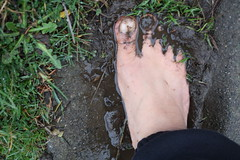 IMG_1224 (bfe2012) Tags: barefoot barefeet barefooting barefooted barefooter barefoothiking barefootlifestyle feet dirtyfeet toughsoles