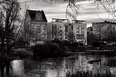 Nelly-Sachs-Park (part) (.Dirk) Tags: berlin pentaxk5ii pentaxda4028limited smc nellysachs prime sw bw bnw street park teich pond pancake