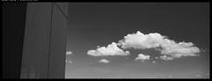 X1D5_B0003188 copy (mingthein) Tags: thein onn ming photohorologer mingtheincom availablelight xpan hasselblad medium format widescreen clouds sky bw blackandwhite monochrome x1d