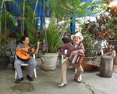 Mexico (Cancun) Mexican musicians (ustung) Tags: mexico cancun people dailylife candid musician street