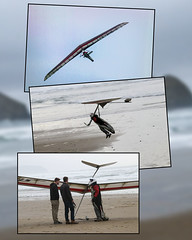 2018-01-12 Gliding through the sky! (Mary Wardell) Tags: glider gliders collage coast oregoncoast landing beach unexpected canon 80d
