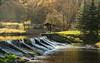 Am Wehr (berndtolksdorf1) Tags: deutschland thüringen weiseelster fluss wehr jahreszeit herbst outdoor landschaft landscape natur