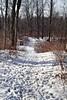 Tracks of the Deer (Steve InMichigan) Tags: kironmc28210mmf3856 fotodioxpkeoslensadapter deertracks snow woods deertrail winter winterscene
