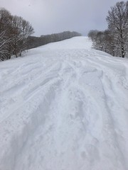 Do you want to try? (peaceful-jp-scenery (busy)) Tags: madarao powder snow ski resort 斑尾高原 スキー場 雪 飯山 長野 日本 iphone8