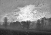 Blizzard (Davoski) Tags: snow blizzard berkhamsted berkhamstedhill winter storm chilterns beastfromtheeast landscape hill clouds