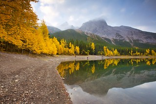 Fall at Wedge Pond 2017