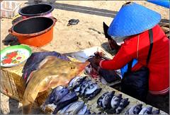 ce soir au dîner... poissons ! (Save planet Earth !) Tags: indonésie bali fish amcc nikon travel voyage jimbaran poisson