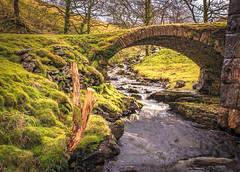 Troll Bridge [Explore 12 02 2018] (urfnick) Tags: purple canon eos 1300d tamron 18270mm sundaylights yorkshiredales nationalpark stream river riverdee rocks explore