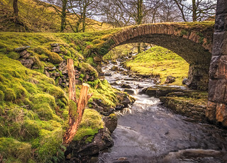 Troll Bridge [Explore 12 02 2018]