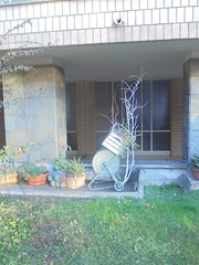 058 (en-ri) Tags: piante vasi pots sony sonysti carrellino giardinetto verde erba grass