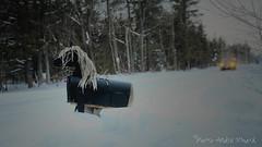 "Boîte postale ... ( P-A) Tags: aylmer banlieu boîteauxlettres borduredechemin campagne centreéquestre cheminpink cheval hiver originale poney photos simpa© ""nikonflickraward"" jesuisvenuevousdire"