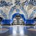 _MG_3045 - The cobalt hall