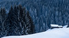 Beauty of winter (Peter Hungerford) Tags: trees patterns hut snow frost image pastfeaturedwinner