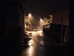 Where the night has come. (Alessandro Giangiulio) Tags: car village snow fog nobody dog lonely street lights night